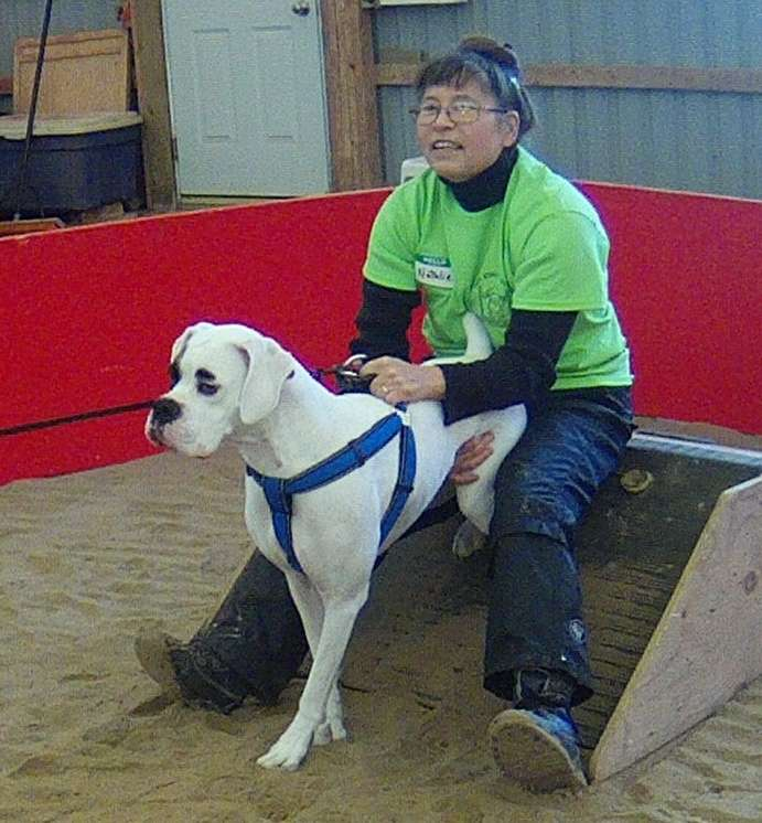 Beginner dog 'Pirate' prepares for a release