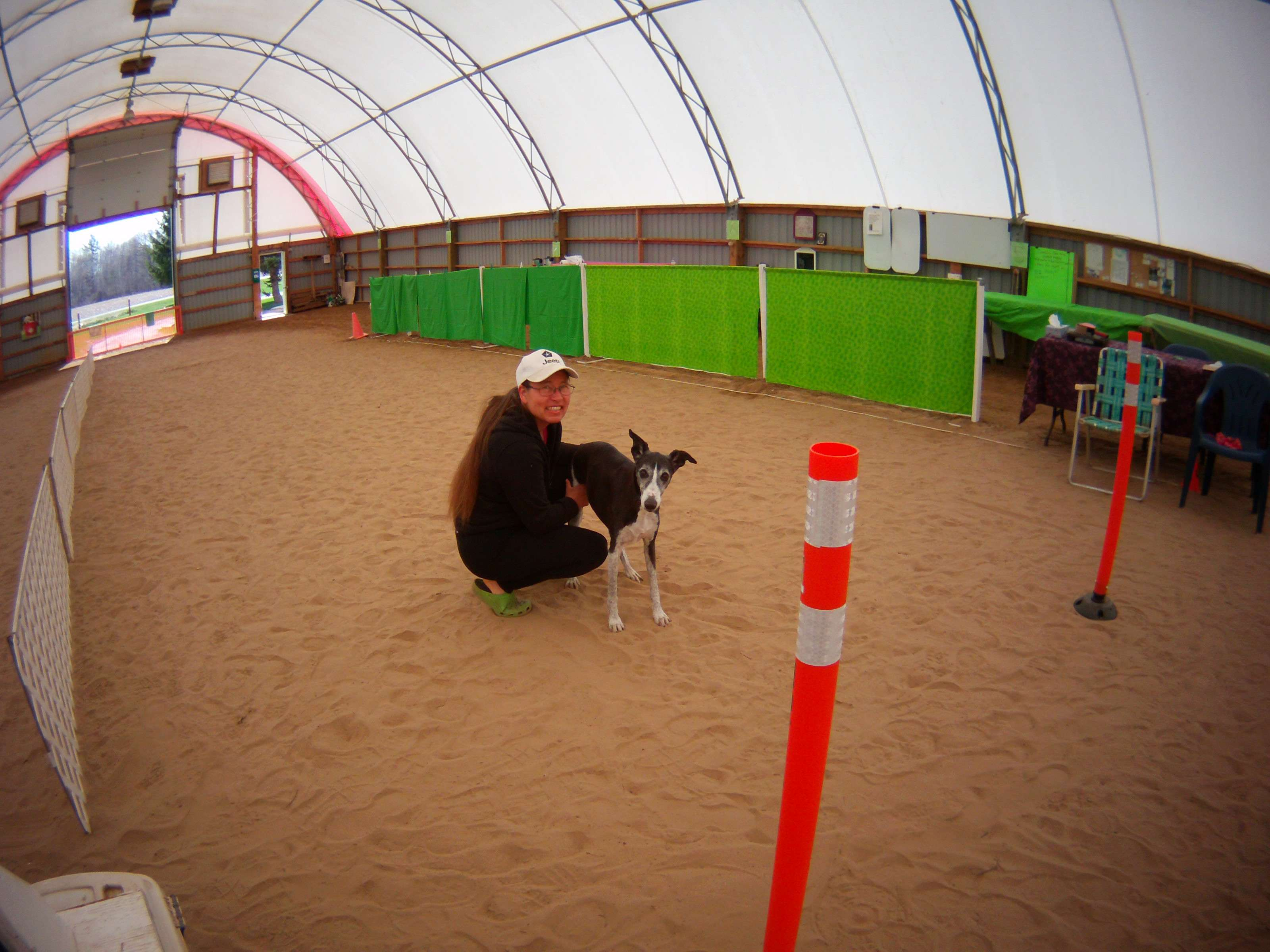 Almost 13 years old and Domino still likes to come out to the Diggity Dome. He gives his approval to the set up.